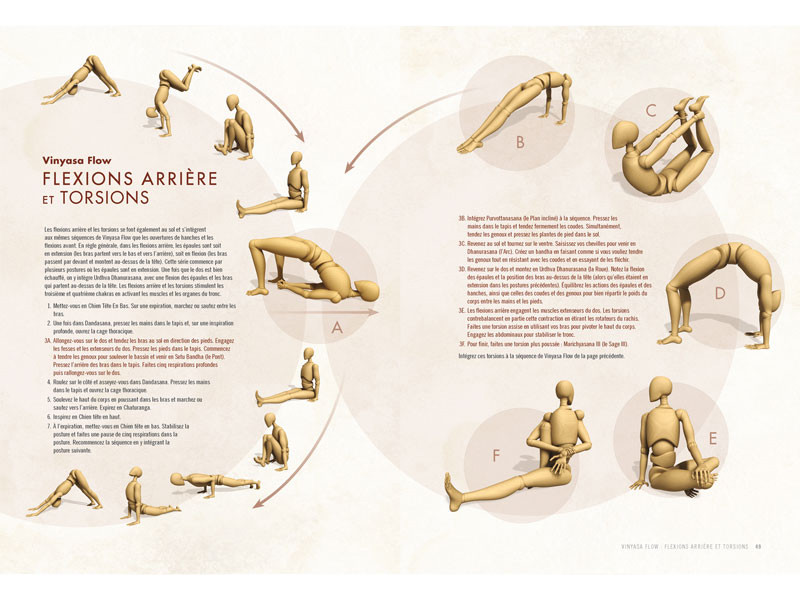 Anatomie des Postures Debout et du Vinyasa Ray Long