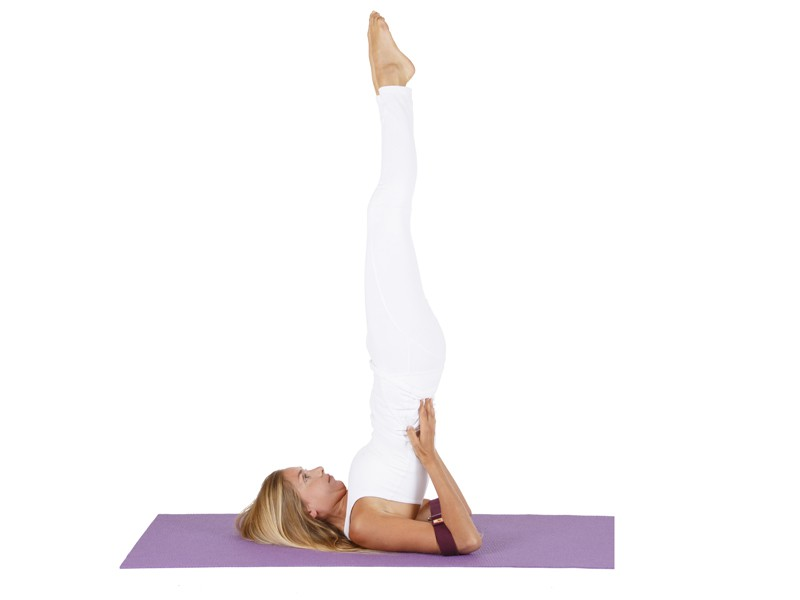 Sangle de yoga coton Bio boucle rectangulaire Chocolat