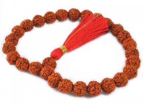 Mala 27 perles Rudraksha