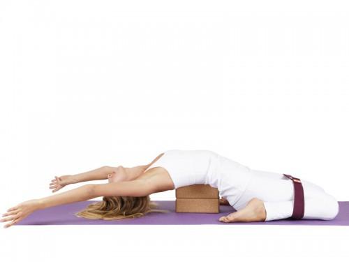 Article de Yoga Sangle de yoga coton Bio boucle rectangulaire Prune